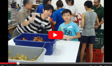 Family and Friends Bond During a Million Meals of HoPE Feeding Event in Singapore